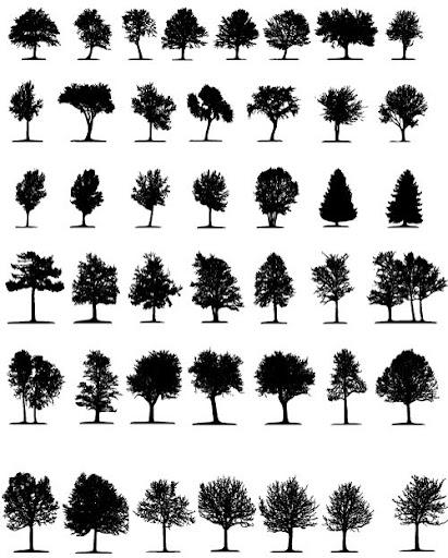 çeşitli vectorler4