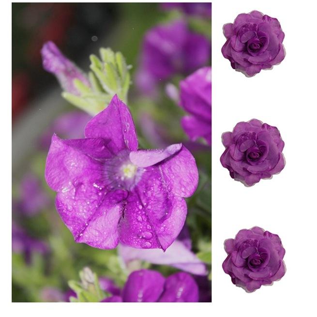 nydelige blomster2