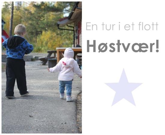 høst-blogg1