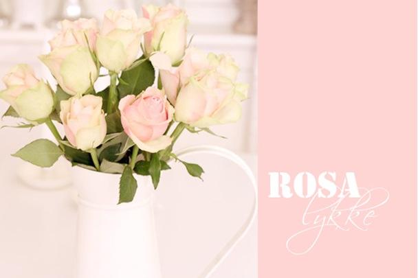 Rosa lykke1