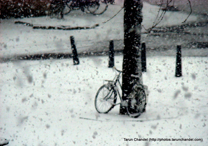 Snow Winters Snowfall Dutch Cycle Holland Cycling Netherlands Cycle, Tarun Chandel Photoblog
