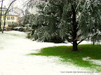 switzerland trip lucerne green in snow, Tarun Chandel Photoblog