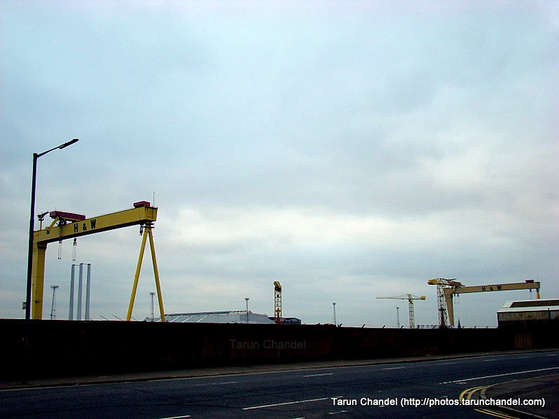 Samson and Goliath Cranes of Belfast, Tarun Chandel Photoblog