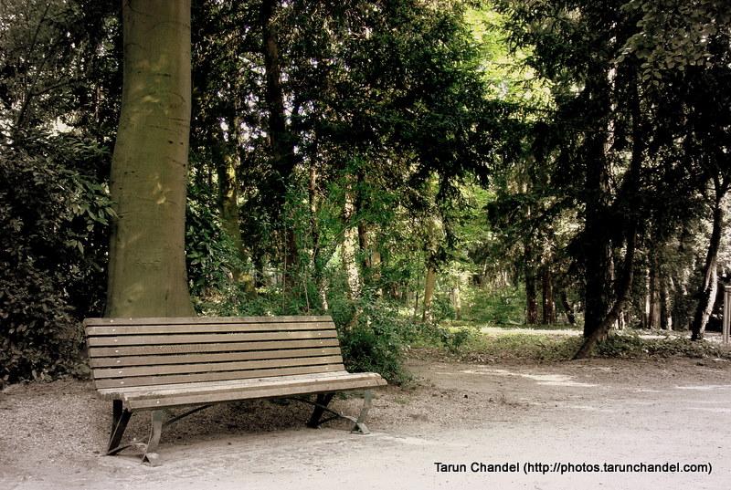 Bench Park, Tarun Chandel Photoblog