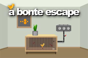 [Imagen A Bonte Escape]