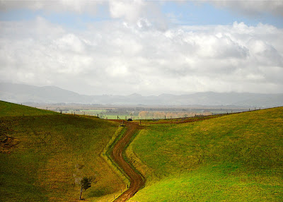 New Zealand countryside, farmland with country lane