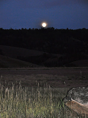 moon rising as seen from the Stanley, Idaho airport