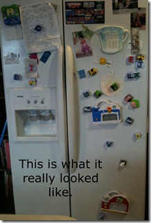 front of fridge 2