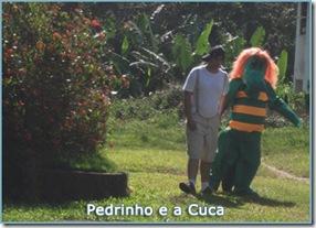 07-casa-pedrinho-cuca-sitio-creche-escola-ladybug-recreio