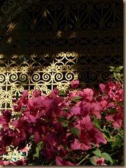 marrakech 2011 041