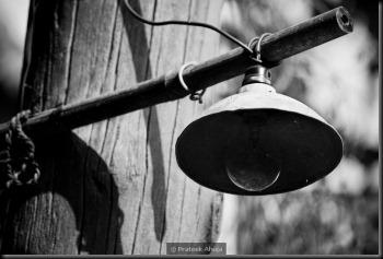 a lone lamp