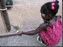 Zoo Aug '10 007