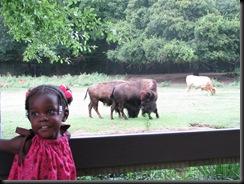Zoo Aug '10 020