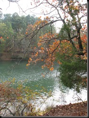 Tyler State Park Dec. '10 040