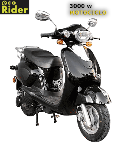 http://lh5.ggpht.com/_H-IQBg1p-SQ/S6j-fRRvxxI/AAAAAAAABos/8WnlvPd_sYE/ECORider_grande-motociclo.png