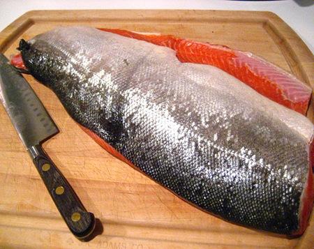dana fish2