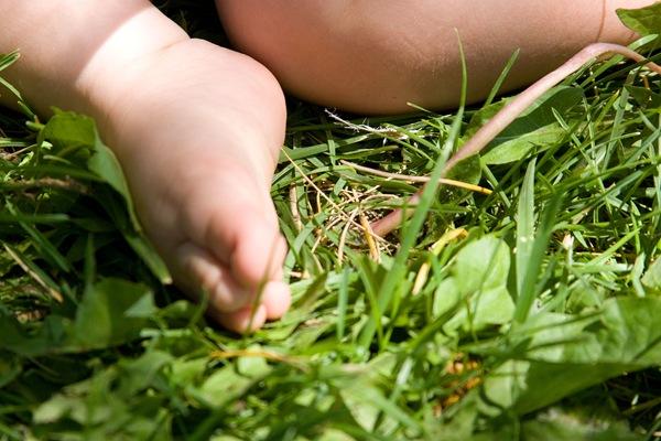 TDS-soft-baby-skin-poky-grass