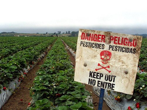 what's on my food? searchable database reveals toxicology of pesticide residue