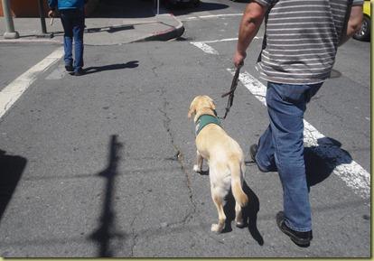 Reyna crossing the street in SF.