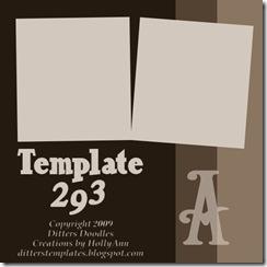 DDTT-Temp293prv