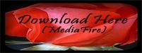 MediaFire2