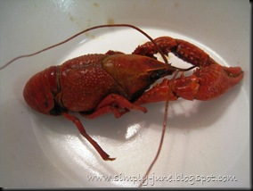 Crawfish-4