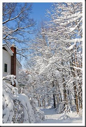 Snow-Feb-2011-2