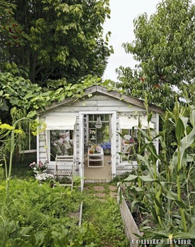 greenhouse-exterior-de-37094954