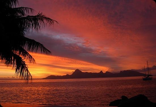 Tahiti 144