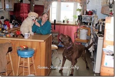 Teena,Ruby,Toby-Oct19