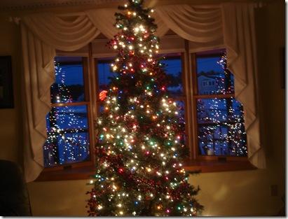 Christmas decorations 2010 004