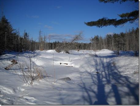 Snowmobiling 2011A 031