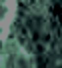 IINMVUAXF_6000002_001_0011.jpg