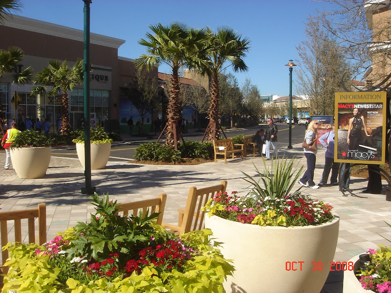 Photos of The Shops at Wiregrass Grand Opening