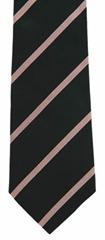 Westminster school tie