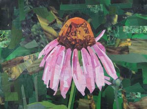 Cone Flower by collage artist Megan Coyle