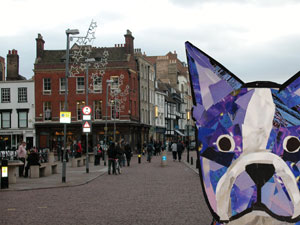Bosty in Cambridge by collage artist Megan Coyle
