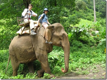 elephant_riding