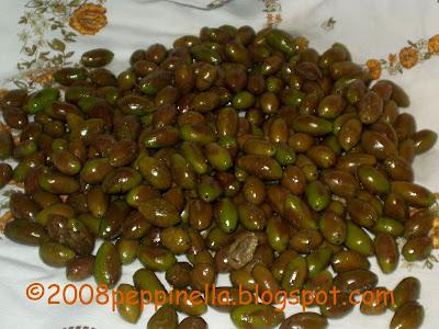 frische oliven trocknen
