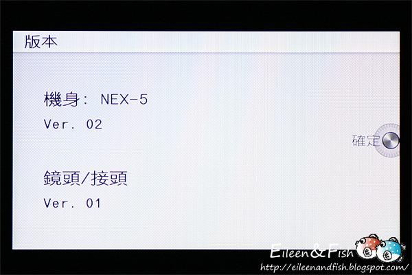 20100703-NEX5-3-20