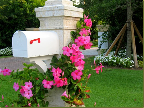 Landscaping ideas for landscaping mailbox area for Mailbox ideas