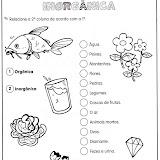 ACTIVIDADES DE CIENCIAS-7.jpg