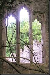 ruined Irish church