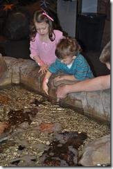 aquarium 025