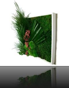 tableau_vegetal