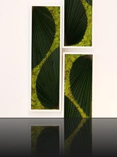 tableau-vegetal-amazone1