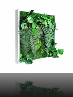 tableau-vegetal-matigreen-meamea1