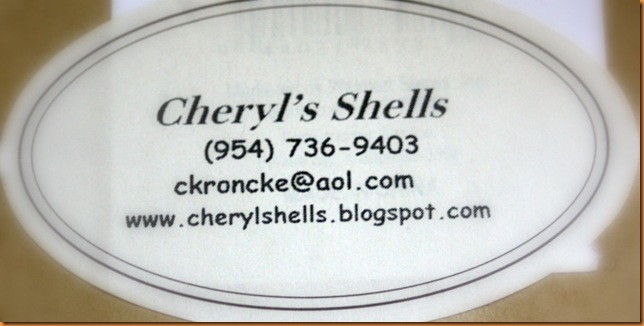 shells 003-1