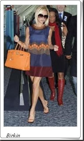 celebridade birkin bag