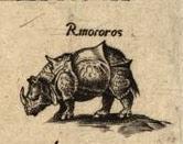 Rinoceronte del mapa de Diego Gutierrez